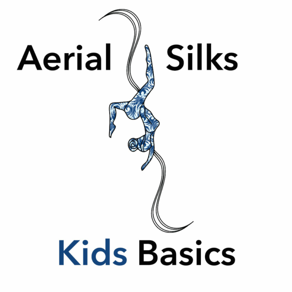 Beginner Silks Class for Kids