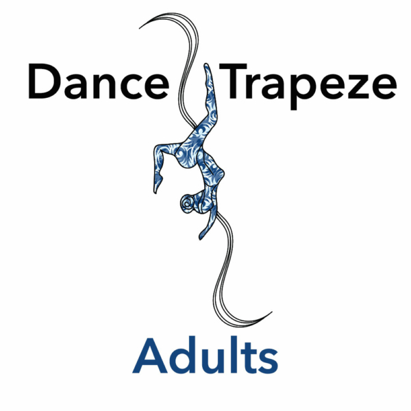 Adult Trapeze Lessons
