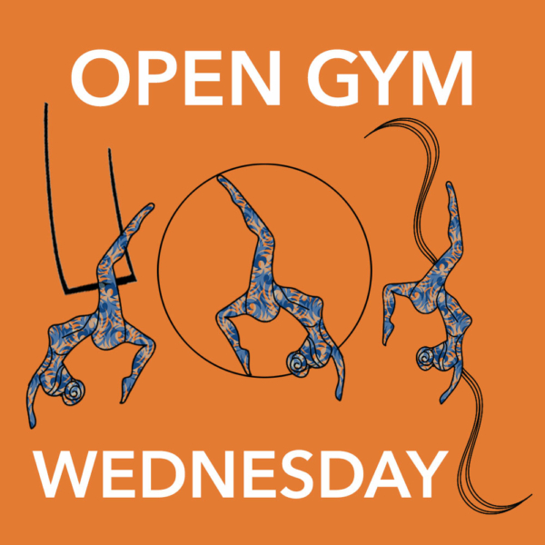 Wednesday Open Gym