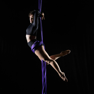 ballet for aerialists