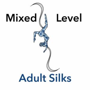 aerial silk class